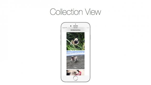 ios collection view tutorial