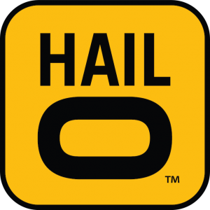hailo_logo how to beat uber by creating a competitive ride-sharing app? - Hailo Logo 300x300 - How to Beat Uber By Creating a Competitive Ride-sharing App?