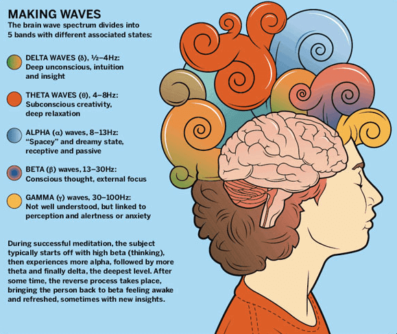 What-are-Brainwaves