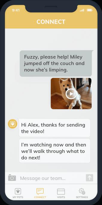 app-like-Uber-for-pets-2
