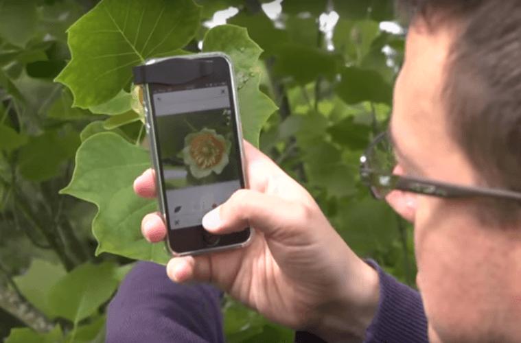 plant-snap-app