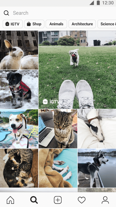 create an app like instagram, How to Make an App like Instagram: Statistics+ Features+ Cost